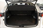 Lexus NX 300h AWD Executive | Taklucka | Navi